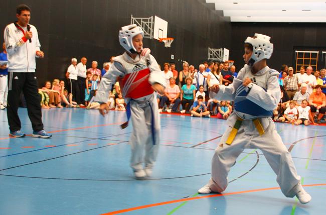 Bild:Taekwondo